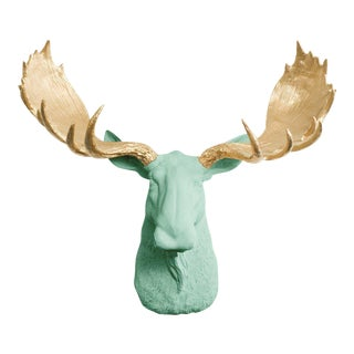 Wall Charmers Mint & Gold Faux Taxidermy Moose Head Wall Sculpture