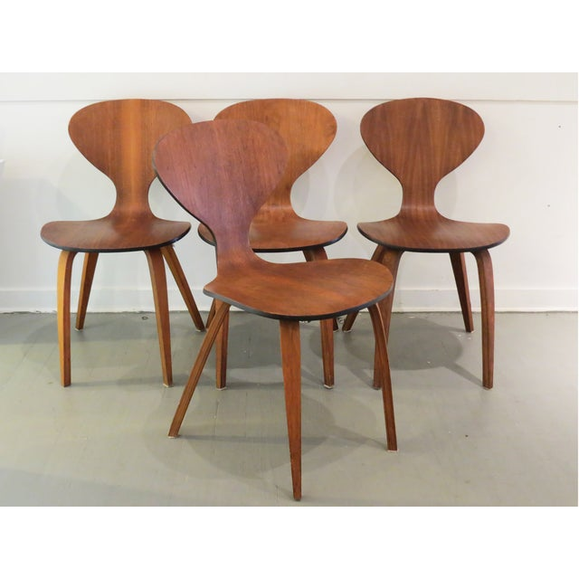 Image of Vintage Cherner Dining Chairs - Set of 4