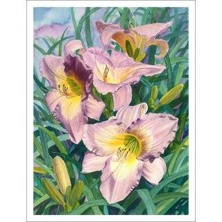 """Pink Day Lilies"" Giclée Print"