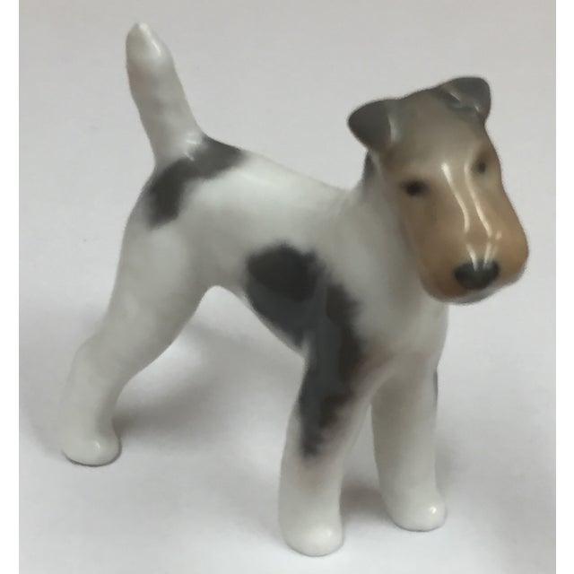 Royal Copenhagen Antique Porcelain Fox Terrier - Image 2 of 6