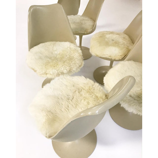 Eero Saarinen Tulip Chairs with Custom Brazilian Sheepskin Cushions - Set of 6 - Image 8 of 9