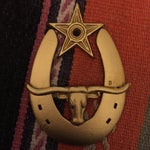 Image of Gold Horseshoe with Star and Longhorn