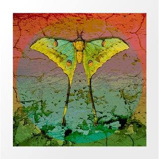 Vintage Luna Moth Archival Print