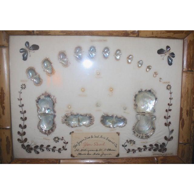 Image of Japanese Shadow Box Pearl Display