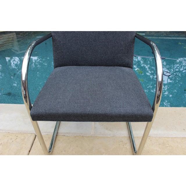 Vintage Ludwig Mies Van Der Rohe Knoll Tubular Brno Chair - Image 9 of 10