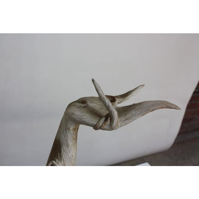 Image of Petrified and Painted Tree Branch 'Hand' Sculpture on Board