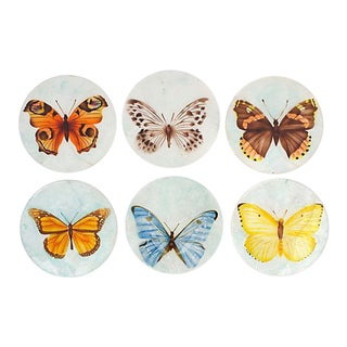 Capiz Shell Coasters, S/6