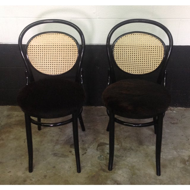 Image of Cane Back Bentwood Chairs With Cowhide Seats