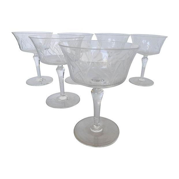 Etched Floral Pattern Crystal Coupe - Set of 6 - Image 1 of 7