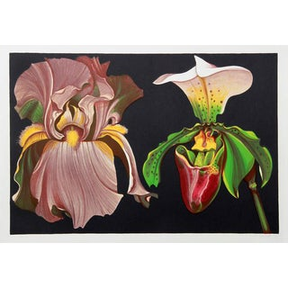 "1974 ""Iris and Orchid"" Print by Lowell Blair Nesbitt"