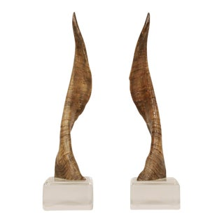 African Horns on Lucite Bases after Karl Springer - a Pair