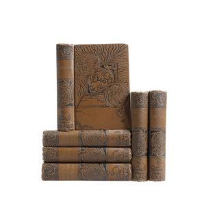 Ornate Ebony & Chocolate Classics - Set of 6