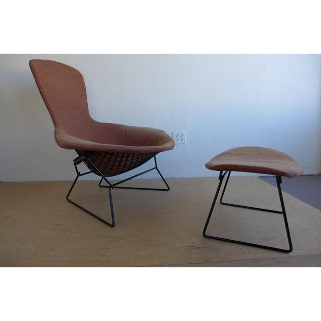 Harry Bertoia Bird Lounge Chair and Ottoman - Image 2 of 9