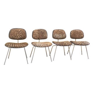 Four Herman Miller Eames Dcm Finished With Leopard