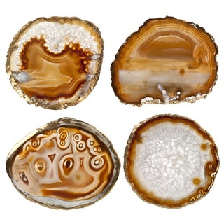 Brown Agate Slice & Gold Rim Coasters - Set of 4