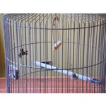 Image of Vintage Metal Bird Cage