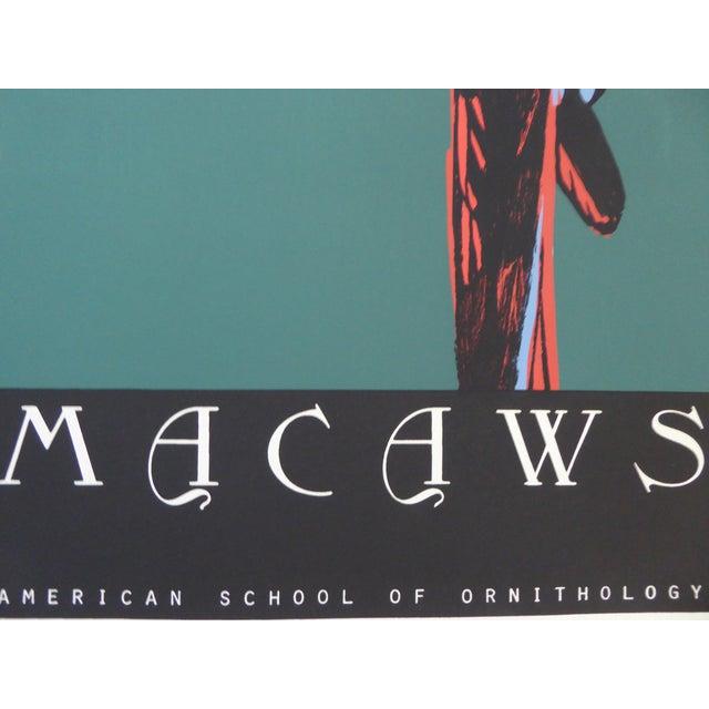 Large Vintage Macaw Silkscreen - Image 4 of 6