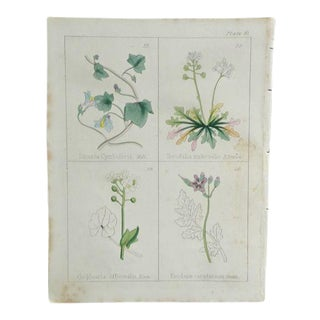 1860 Antique Print Plate 9