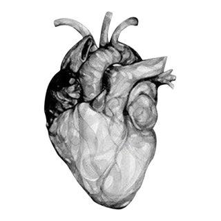 """Kindness"" Tumbler by Stefan Sagmeister"
