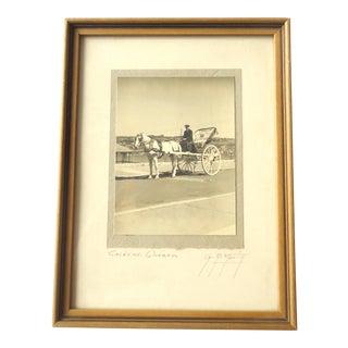 Vintage Quebec Horse Drawn Carriage Photo