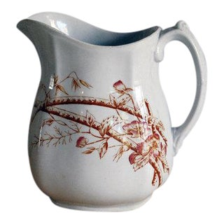 W. & E. Corn Antique English Ironstone Pitcher