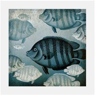 Antique Ocean Fish Archival Print