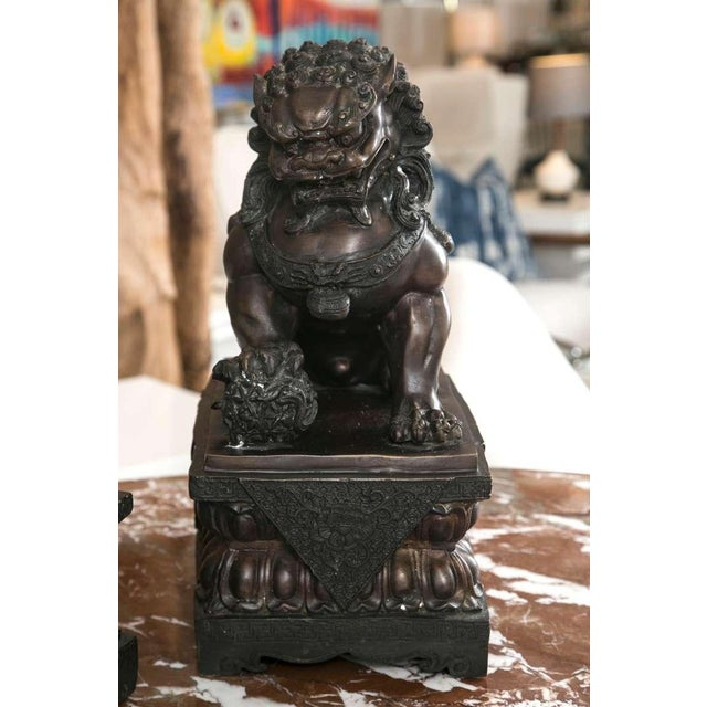 Fine Antique Bronze Foo Lion/ Dog Pair - Image 6 of 10