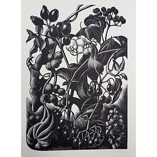 """Garden Still Life"" Woodblock by Claire Leighton"