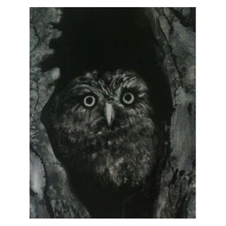 Night Owl by Sylvia Roth