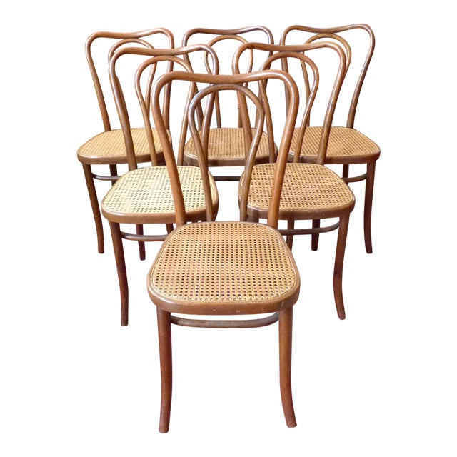 Vintage Bentwood and Cane Cafe Dining Chairs - Set of 6 - Image 1 of 10
