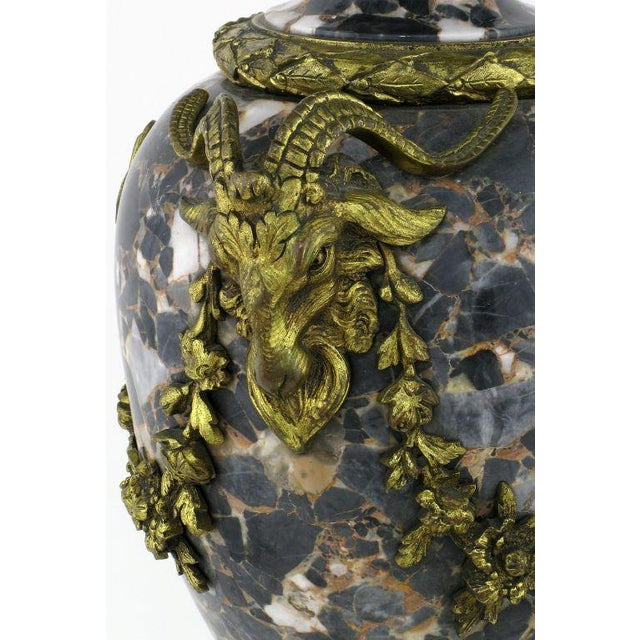 Image of Marble Urn Form Lamp With Bronze Rams Heads And Ormolu