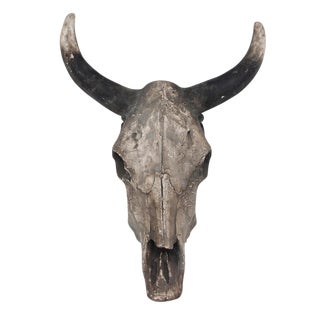 Steer Skull Wall Art