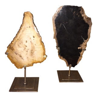 Arteriors Petrified Wood on Stands - Pair