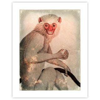 Antique 'Distressed Monkey' Archival Print