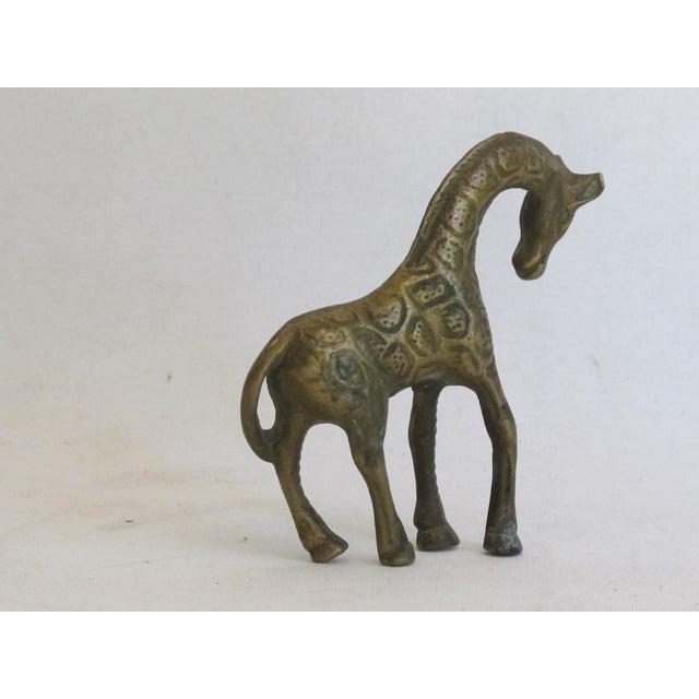 Petite Brass Giraffe - Image 5 of 5
