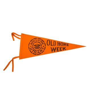 Utica, NY Old Home Week Felt Flag