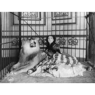 Early 20th-C. True Lion Tamer Circus Photography