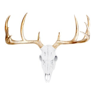 White & Gold Antlers Mini Deer Skull by Wall Charmers