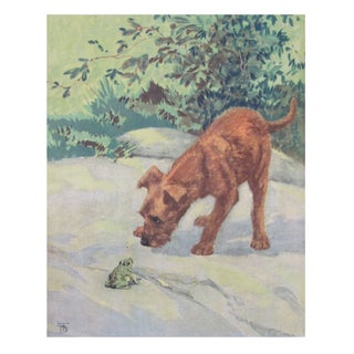 Vintage Diana Thorne Print - Irish Terrier