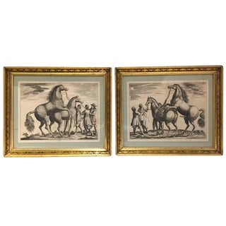 18th Century Thoroughbred Horses Engravings - A Pair