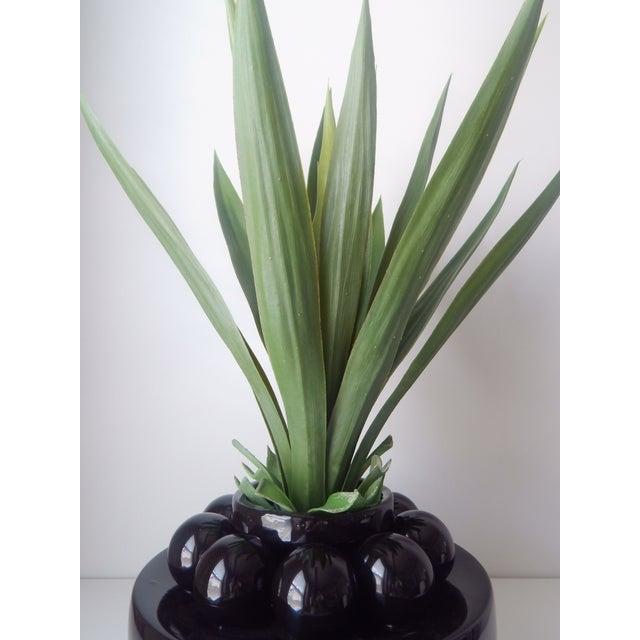 Image of Faux Yucca Botanical