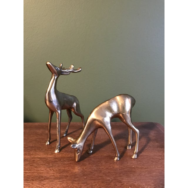 Brass Deer Statues - a Pair - Image 2 of 5
