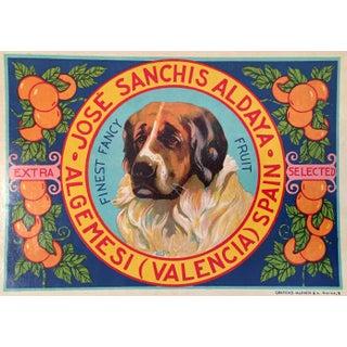 1930s Vintage Spanish Label, Handsome Hound