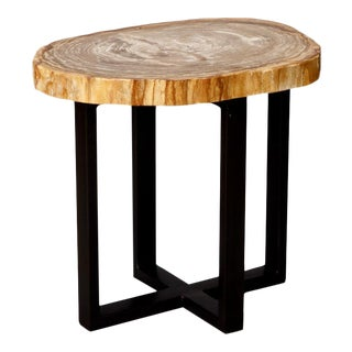 Organic Modern Petrified Wood Table with Custom Iron Base