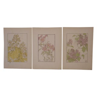 Antique Pochoir Botanicals Prints - Set of 3