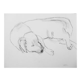 """Little Pup"" Original Drawing by Martha Holden"