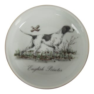 English Pointer Catchall