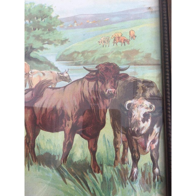 Cows Painting - Image 3 of 3