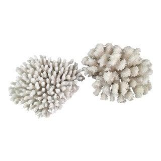 Vintage Genuine Coral Pieces - A Pair