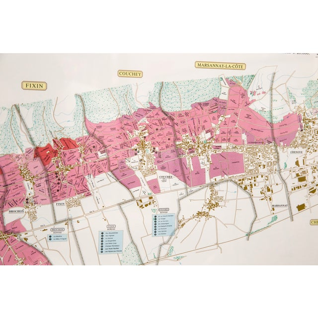 Image of Framed French Topographical Map of Wine Region